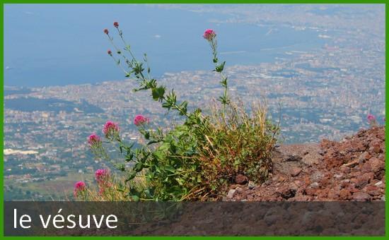 Baie de Naples vue du Vésuve
