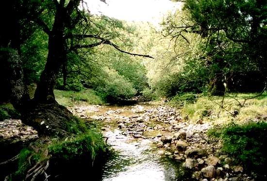 Parc national des Abruzzes, Latium et Molise