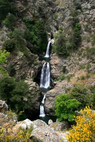 Parc national de l'Aspromonte en Italie