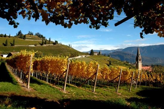 Route des Vins en Italie