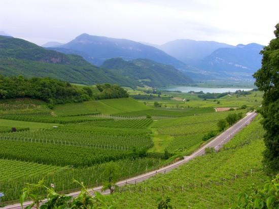 Paysages de la route des vin italienne